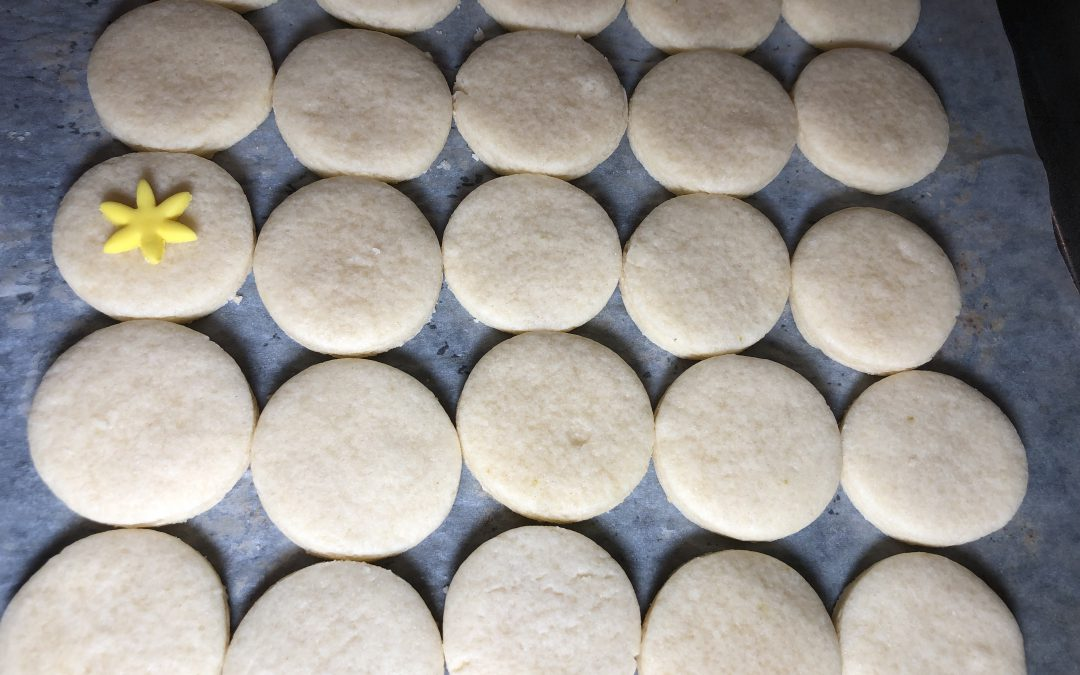 The Flash Sugar Cookies (Cookie Tutorial) Part 1